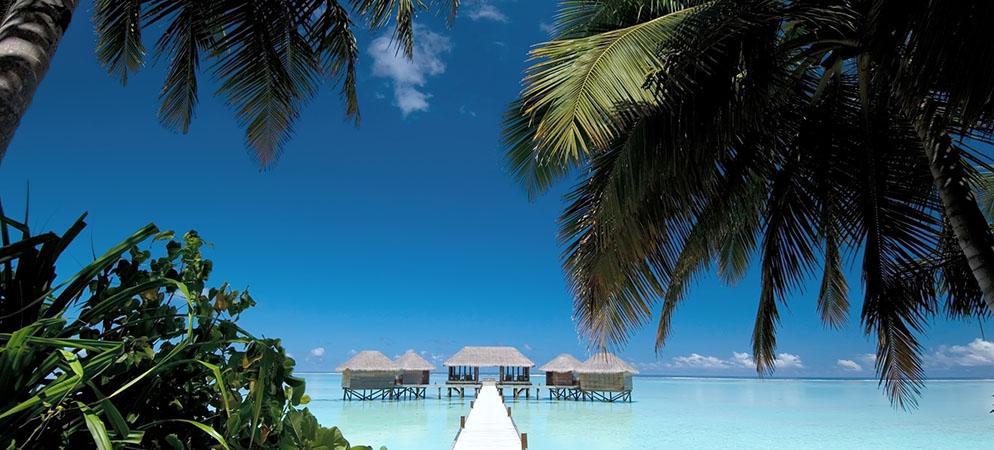 maldive_cover