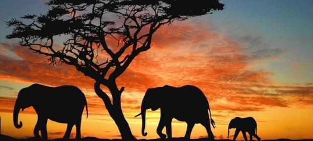 namibia emozioni indimenticabili